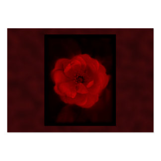 Red Rose. With Black and Deep Red. Business Card Templates