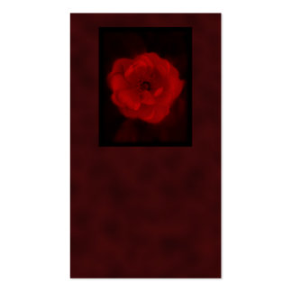 Red Rose. With Black and Deep Red. Pack Of Standard Business Cards
