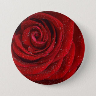 Red Rose with Waterdrops 3 Inch Round Button