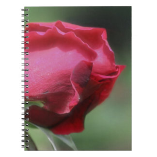 Red Rosebud Flower Nature Spiral Notebook