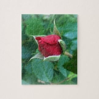 red rosebud jigsaw puzzle