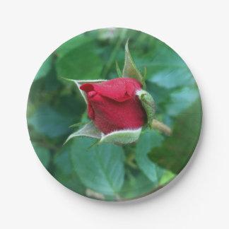 red rosebud paper plate