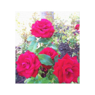 Red roses canvas print