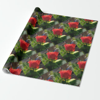 Red Roses for Christmas Matte Wrapping Paper30x30'