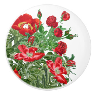 Red Roses Peony Flowers Floral Botanical Knob