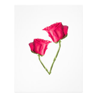 Red Roses Photo Letterhead