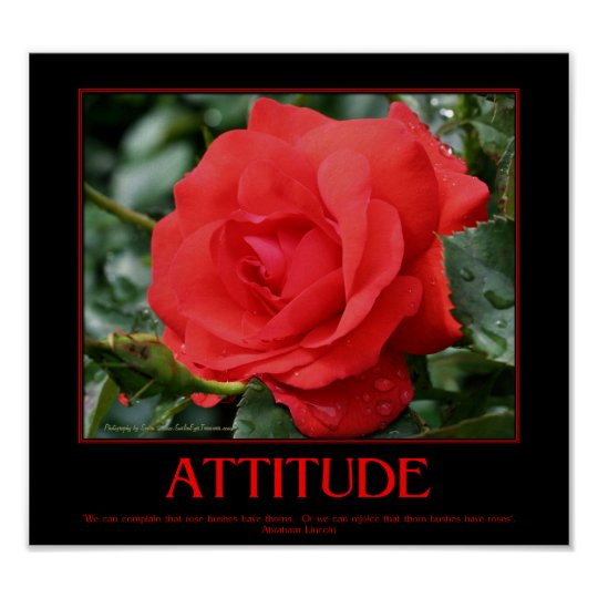 Red Roses Thorns Motivational Attitude Quote Poster