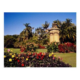 Red Royal Botanical Garden, Sydney, Australia flow Postcard