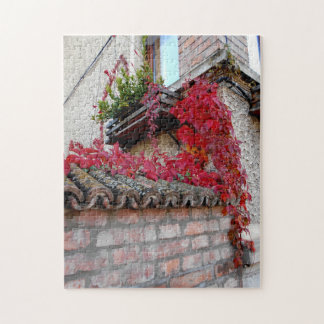 Red Running Plant And The Window Jigsaw Puzzle