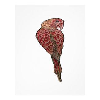 Red Scarlet Letterhead