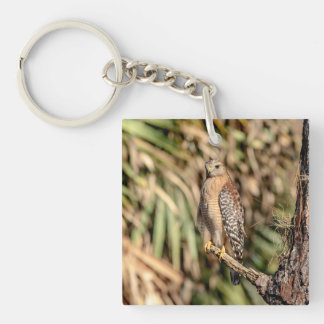 Red Shouldered Hawk in a tree Double-Sided Square Acrylic Keychain