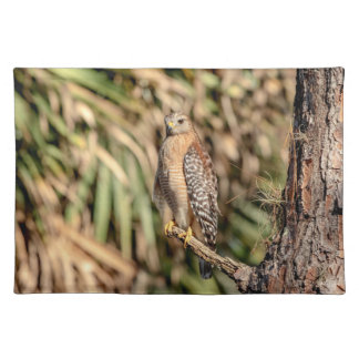 Red Shouldered Hawk in a tree Placemat