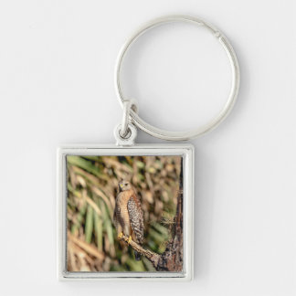 Red Shouldered Hawk in a tree Silver-Colored Square Keychain