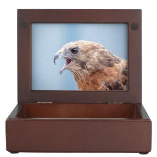 Red Shouldered Hawk Keepsake Box