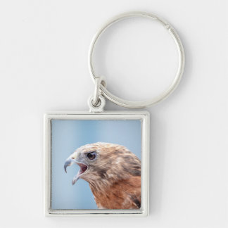 Red Shouldered Hawk Keychain