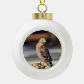 Red Shouldered Hawk on a rock Ceramic Ball Christmas Ornament