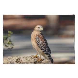 Red Shouldered Hawk on a rock Placemat