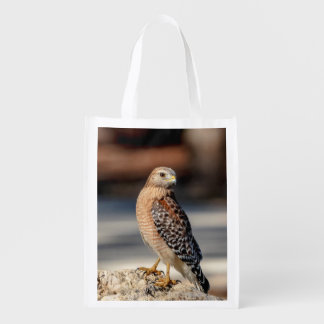 Red Shouldered Hawk on a rock Reusable Grocery Bag