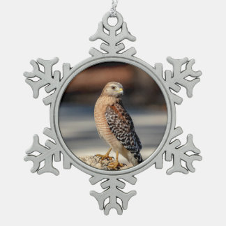 Red Shouldered Hawk on a rock Snowflake Pewter Christmas Ornament