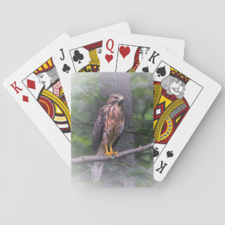 Red Shouldered Hawk Poker Deck