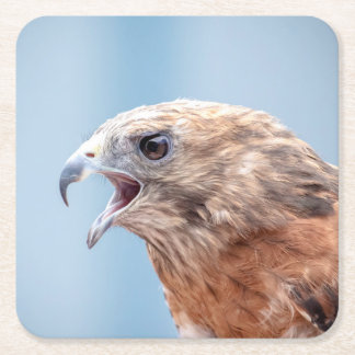Red Shouldered Hawk Square Paper Coaster
