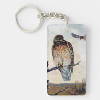Red-shouldered Hawks Vintage Illustration Single-Sided Rectangular Acrylic Keychain