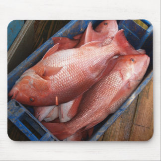 Red Snapper Fish Mousepad