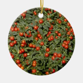 Red Solanum Pseudocapsicum (Jerusalem Cherry) flow Ceramic Ornament