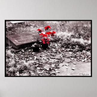 Red Splash Poster