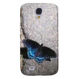 Red Spotted Admiral Butterfly