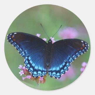 red-spotted purple round sticker