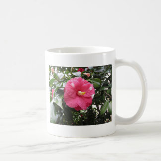 Red spotted white flower of Camellia Marmorata Coffee Mug