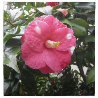 Red spotted white flower of Camellia Marmorata Napkin