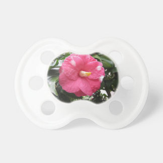 Red spotted white flower of Camellia Marmorata Pacifier