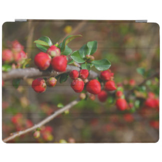 Red Spring Buds iPad Cover