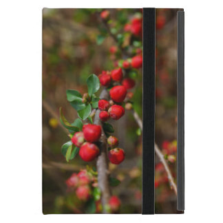 Red Spring Buds iPad Mini Cover