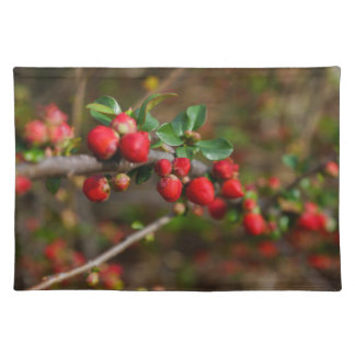 Red Spring Buds Placemat