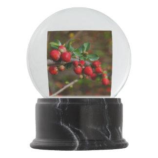 Red Spring Buds Snow Globe