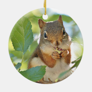 Red squirrel ceramic ornament