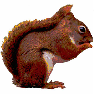 Red Squirrel Christmas Hanging Acrylic Photo Sculpture Ornament