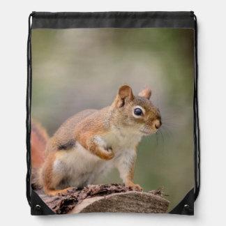 Red Squirrel Drawstring Bag
