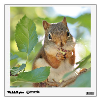 Red squirrel in a tree wall sticker