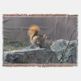 Red squirrel on a stone wall throw blanket