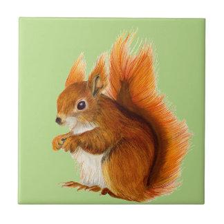 Red Squirrel Painted in Watercolor Wildlife Art Ceramic Tiles