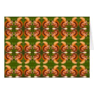 Red Squirrel Pattern Card