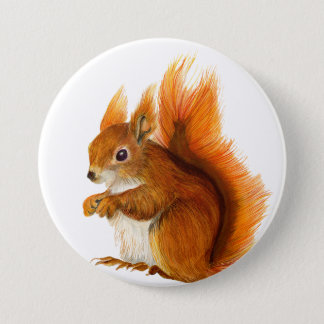 Red Squirrel Watercolour Painting Badge 3 Inch Round Button