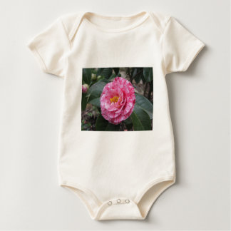 Red streaked white flower of Camellia japonica Baby Bodysuit