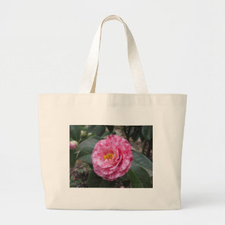 Red streaked white flower of Camellia japonica Large Tote Bag