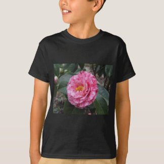 Red streaked white flower of Camellia japonica T-Shirt