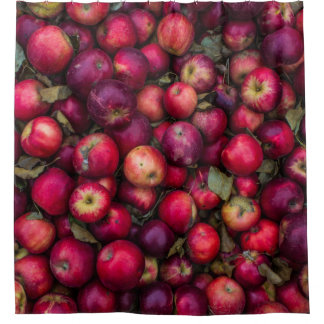 Red summer apples pattern